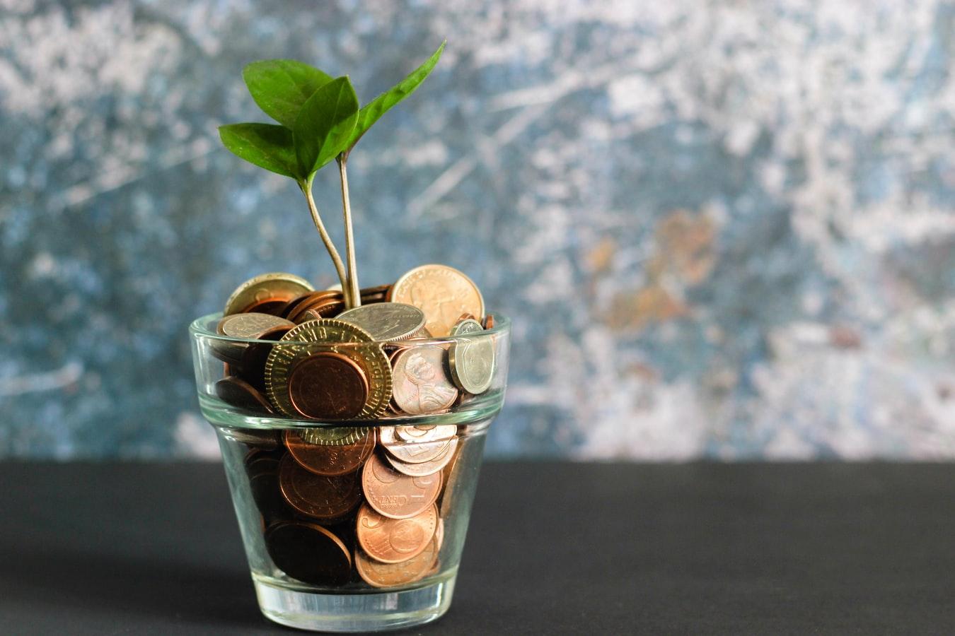 年金保険を解約する際の注意点