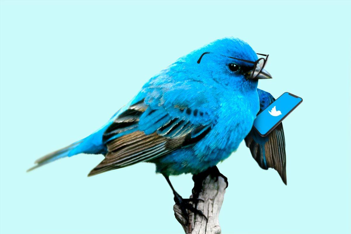 米国株の情報収集_twitterを活用する